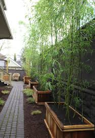 Outdoor Planter Ideas by Tall Wooden Outdoor Planters With Natural Bamboo Planters Ideas