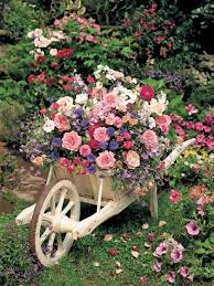 flowers garden gardening ideas