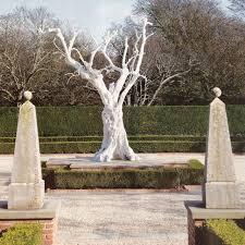 white tree white tree view open spaces feng shui