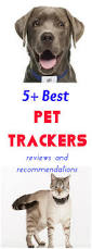 Radio Locator App 5 Best Pet Tracking Systems Reviews And Recommendations