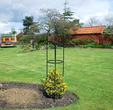 kingfisher steel garden obelisk garden outdoor rose plant frame