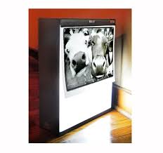 light boxes for photography display 25 best x ray light box images on pinterest x rays glass display