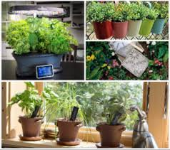 Garden Gifts Ideas Gardening Gift Ideas