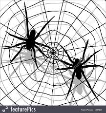 halloween spider background illustration of spider and network