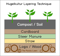 the best way to plant raspberries using hugelkultur and