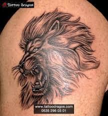 aslan tattoo 601 tattoo dragos