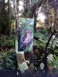 ruru morepork new zealand native owl outdoor aluminium wall