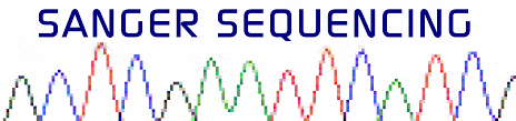 Dna Mapping Fasteris Next Generation Dna Sequencing Ngs Services