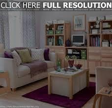livingroom idea small livingroom idea decobizz com