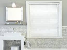 Ideas For Bathroom Window Treatments Bathroom Window Design Ideas Light And Privacy Ideas For Bathroom