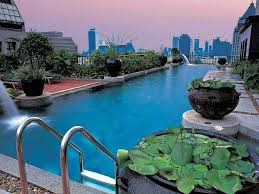 Plants In House Swimming Pool Interesting Rooftop Swimming Pool Design In House