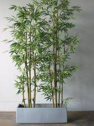artificial plants artificial bamboo plants at rs 3700 set mahipalpur new delhi