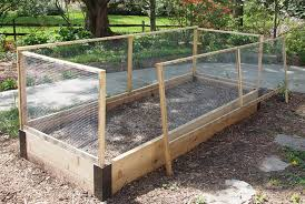 vegetable garden against fence video and photos madlonsbigbear com