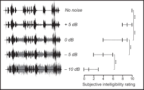 left superior temporal gyrus is coupled to attended speech in a