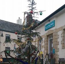 worst tree in britain gets a makeover after backlash