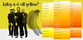 shades of yellow the importance of colour in web design start digital