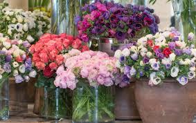 6 gorgeous mid winter flowers to buy in paris paris perfect