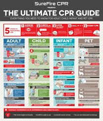 everything you need to know for child infant and pet cpr 5