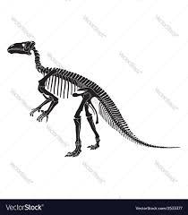 halloween skeleton silhouette dinosaur skeleton silhouette royalty free vector image