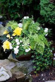 193 best flower container ideas images on pinterest gardening