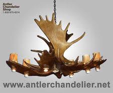 Authentic Antler Chandelier Moose Antler Chandelier Ebay