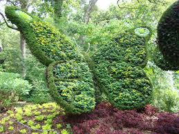 Atlanta Botanical Gardens by The Great Healthy Yard Project Peachtree Garden Club