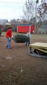 brown s christmas tree browns of the carolinas browns christmas tree farm home