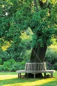 Circular Bench Around Tree Guide To Get Plans For Bench Around Tree Woodworking Design And