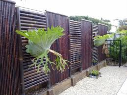 Privacy Screen Ideas For Backyard Modern Fence Screening Ideas Privacy Screens Stained Bamboo