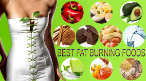 top 10 best facts of effective fat burning foods best fat
