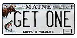 Maine State Vanity Plates Maine Sportsman Plate Support Wildlife Wildlife Fish U0026 Wildlife