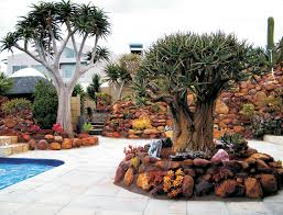 Rock Garden Succulents Gardening Cacti Succulents West Coast Escape Magazine