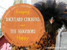 Backyard Chicken Com Living Homegrown