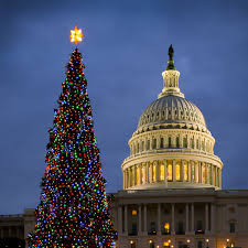 the national christmas tree is touring america on its way to