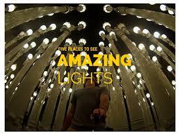 bug traps vs bug lights u2014 1000bulbs com blog