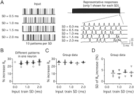8877 Lifier Schematic Diagram Dynamic Interaction Of Ih And Ik Lva During Trains Of Synaptic