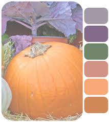 fall color pallette color palette fall crafts by chris