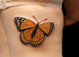 39 butterfly ideas designs for picsmine