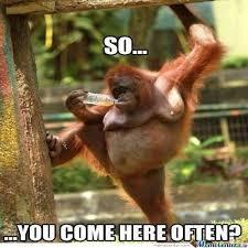 Sexy Monkey Meme - sexy monkeynessavc30 meme center funny memes