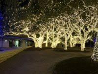johnson city texas christmas lights johnson city tx events things to do eventbrite rntravel us
