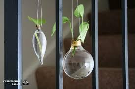 in light bulbs plant in light bulb r jesse lighting