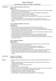 free resume template layout sketchup program car remote visual merchandising resume sles velvet jobs