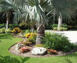 Florida Garden Ideas Backyard Florida Backyard Landscaping Ideas Backyards