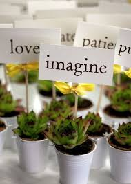 walmart wedding favors so flats of annuals or succulents for like 10 at walmart