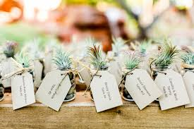 plant wedding favors the tree planting ceremony of the