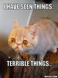 Cat Memes Generator - me while reading through all dynamic queue complaints