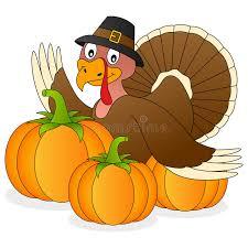 turkey pumpkins thanksgiving turkey and pumpkins stock vector illustration of