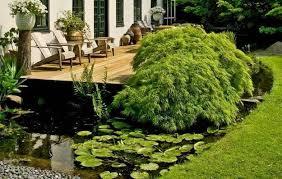perfect ideas japanese landscape design chic small backyard