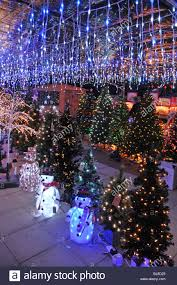 garden center indoor display of trees and lights for