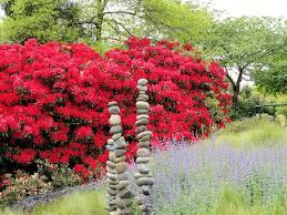 Botanical Garden Bellevue Bellevue Botanical Garden Gracia S Travels A Photo